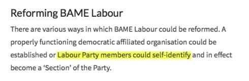 Labour BAME self ID
